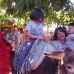 festanonni_60-354-600-450-80