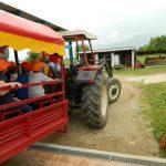 giro_sul_trattore_40-316-600-450-80