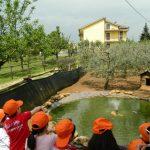 visita_guidata_30-324-600-450-80-min